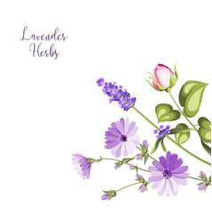vintage botanical vector image