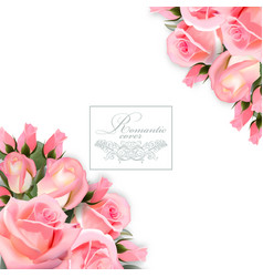 background with pink roses flowers vector image