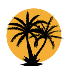 Beautiful black and white palm tree leaf vector