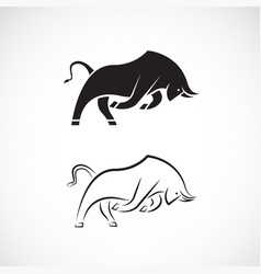 bull design on white background wild animals easy vector image