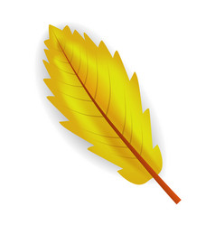 fall yellow leaf icon realistic style vector image