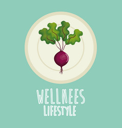 Garlic vegetable wellness lifestyle vector