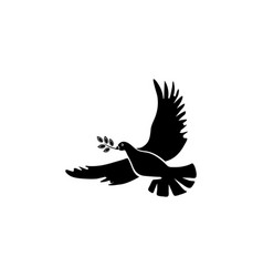 pigeon with an olive branch a symbol of peace vector image