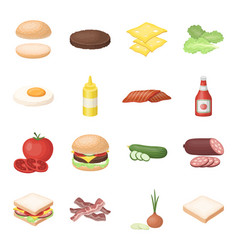 Rolls cutlets cheese ketchup salad and other vector