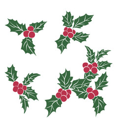 set of christmas holly leavesbranch of green vector image