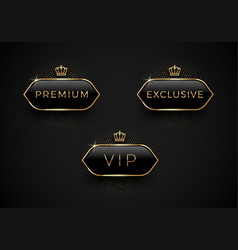 Vip premium and exclusive black glass labels with vector