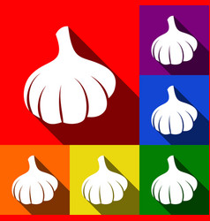 garlic simple sign set of icons with flat vector image vector image