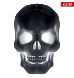X-ray Human skull vector image vector image
