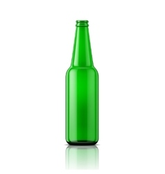 Green beer bottle without cap vector image