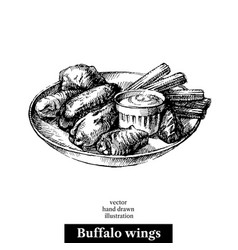 Hand drawn sketch buffalo chicken wings black and vector