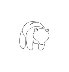 single continuous line drawing cute elegant vector image