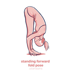 yoga standing forward bend uttanasana asana vector image