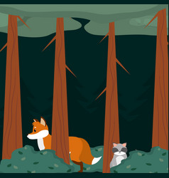 fox and raccoon at forest vector image