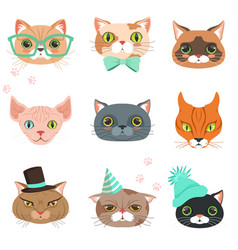Set of cute cats heads of different breeds vector