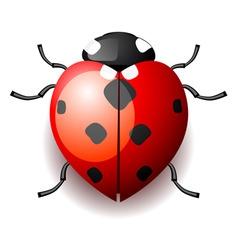 heart form ladybird vector image