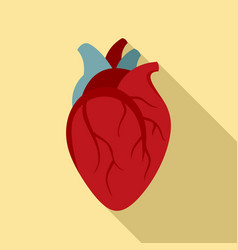 biology human heart icon flat style vector image