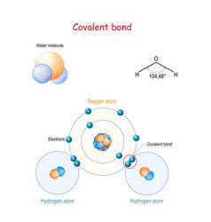 Covalent bond for example water molecule h2o vector