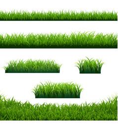 Green grass borders big set white background vector