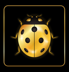 Ladybug gold insect small icon vector