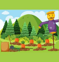 Scene with carrot garden and scarecrow vector