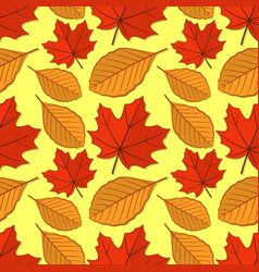 seamless pattern with maple and beech leaves vector image