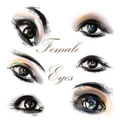 set of hand drawn detailed eyes for design vector image