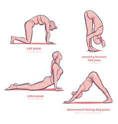 yoga different stretching fitness poses vector image