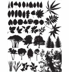 trees grass leaf plant vector image vector image