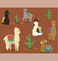 a collection cute alpacas and cacti set vector image