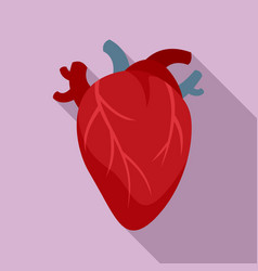 Cardiology human heart icon flat style vector
