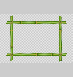 creative of bamboo stems frame vector image
