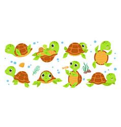Turtle characters cartoon tortoise smile turtles vector