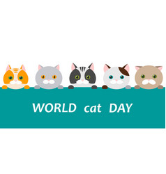 World cat day faces of cats of different breeds vector