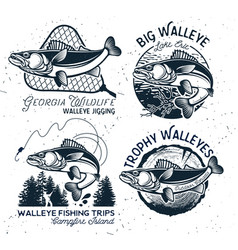 vintage walleye fishing emblems and labels vector image