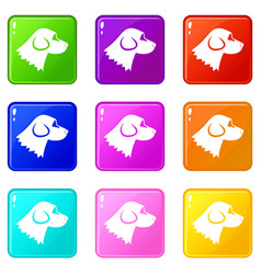 Beagle dog icons 9 set vector