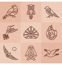 Birds line icons vector