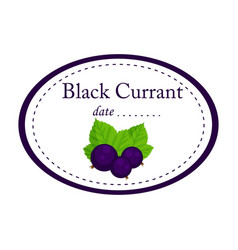 black currant label disign isolated o vector image