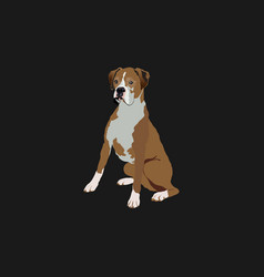 dog in black background vector image