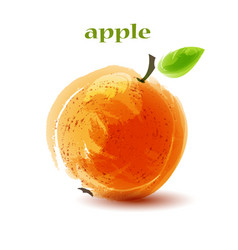 fresh orange apple on white background vector image