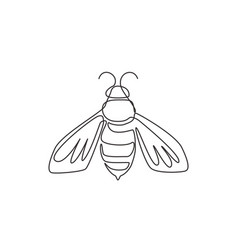one single line drawing cute bee for company vector image