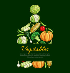 Vegetables and organic veggies poster vector