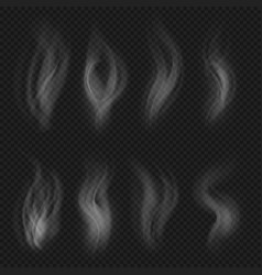white transparent smoke collection hot steam from vector image