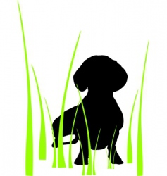 dog in grass vector image vector image