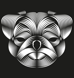 abstract line art of a pug head vector image
