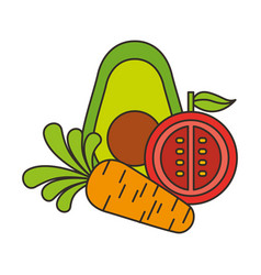 avocado tomato and carrot fresh vector image