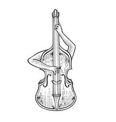 double bass plays on itself sketch engraving vector image