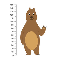 funny brown bear isolated on white background vector image