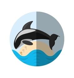 killer whale marine wildlife species badge shadow vector image