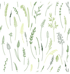 seamless pattern of herbs plants flowers and vector image