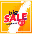 big sale shopping disount template banner design vector image